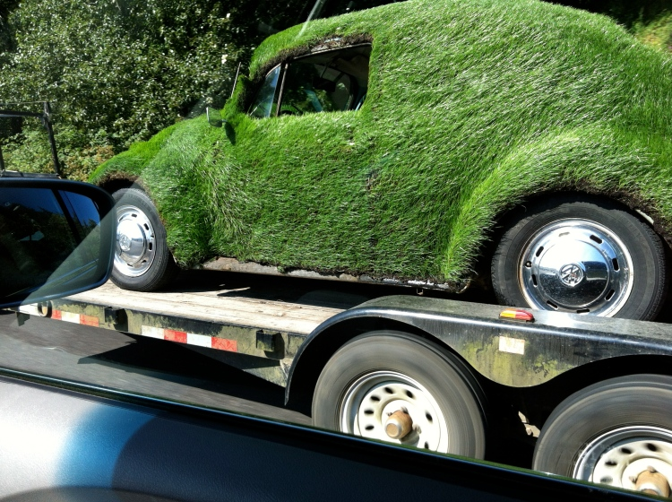 grass covered Volkswagen bug