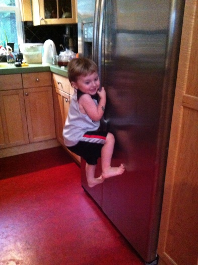 Climbing the Refrigerator